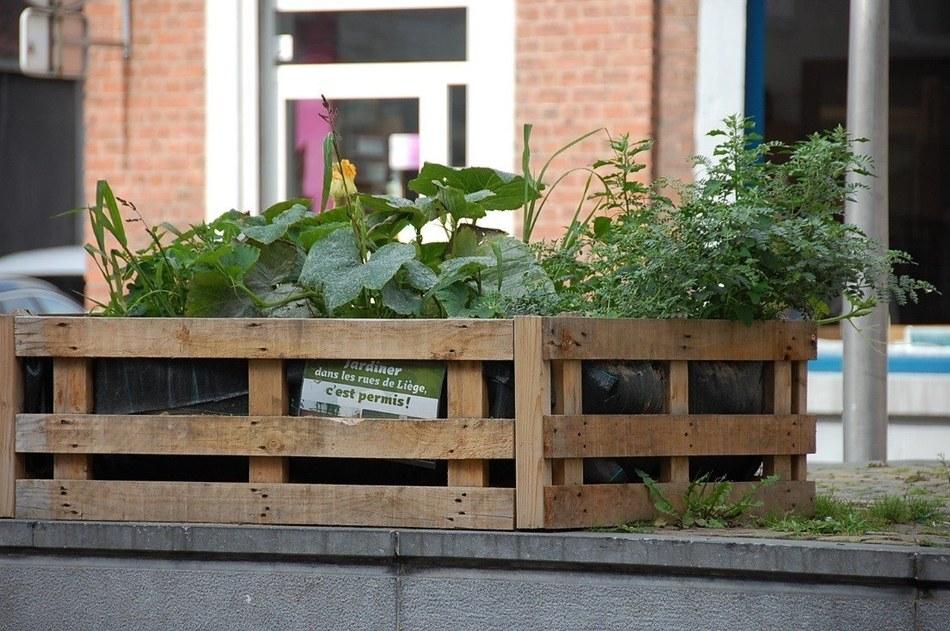 reinventonsliege : permis de végétaliser